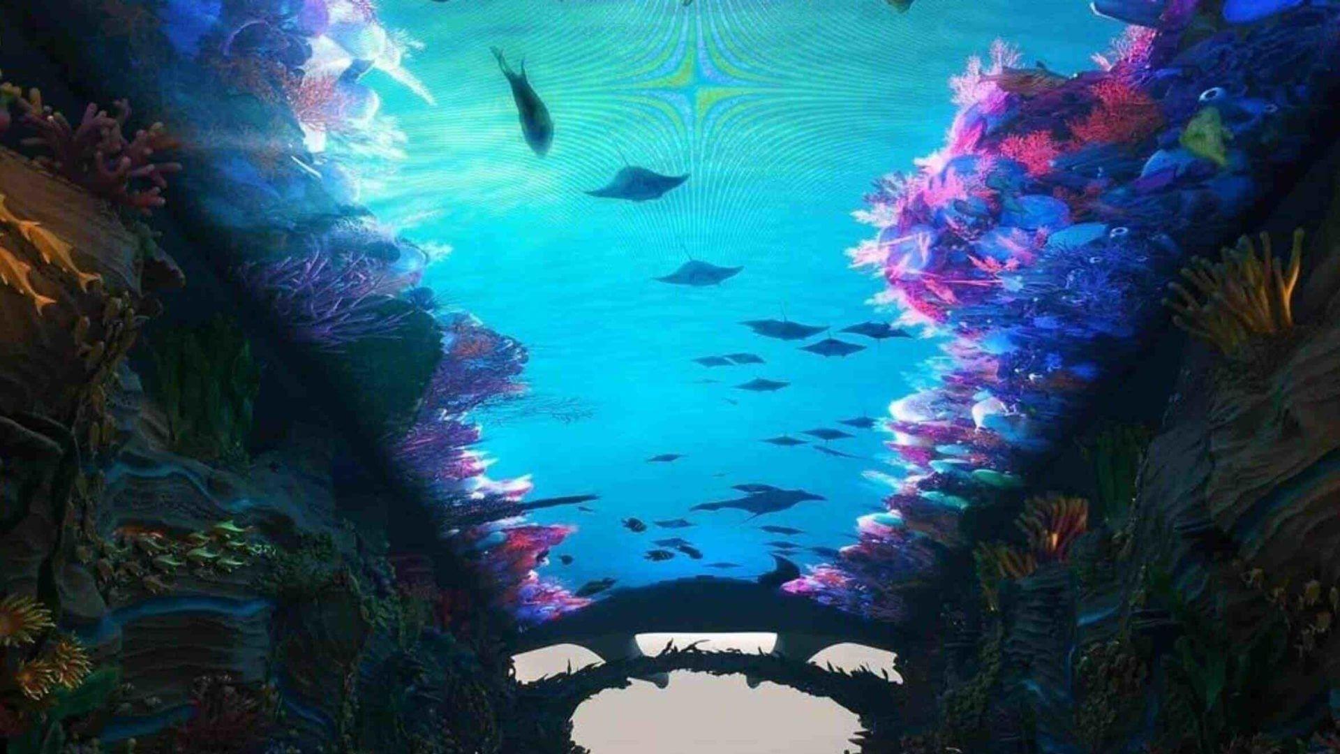 Chimelong Ocean Kingdom media tunnel