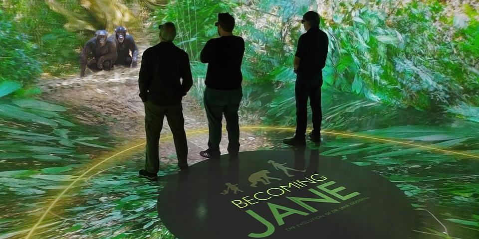Jane - Awards