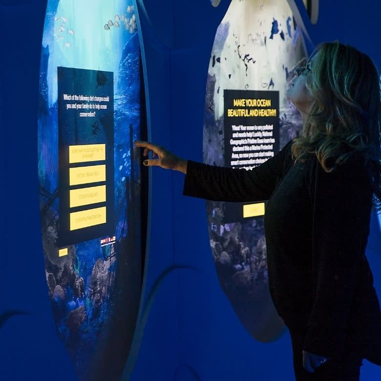 Interactives at a museum