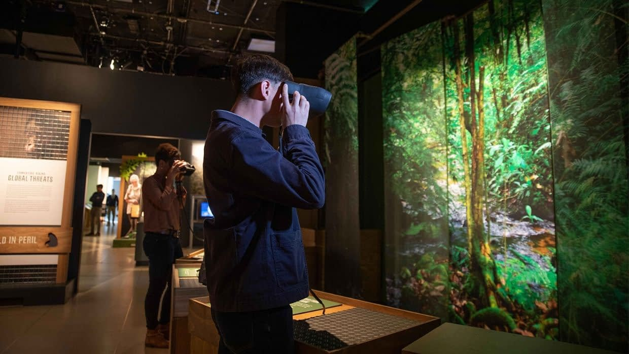 Augmented Reality at Becoming Jane Museum