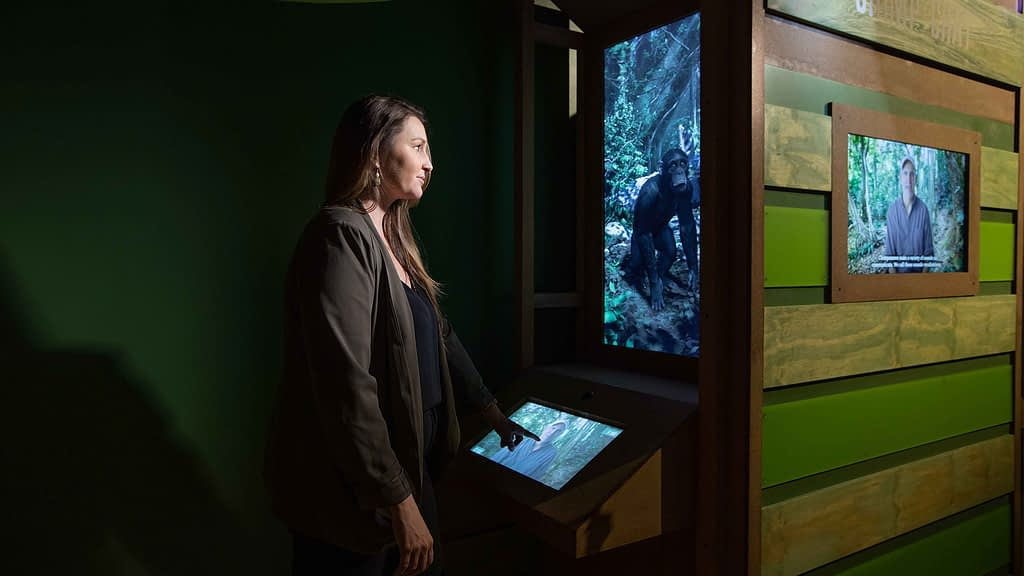 Chimp Chat at Dr. Jane Goodall museum exhibit
