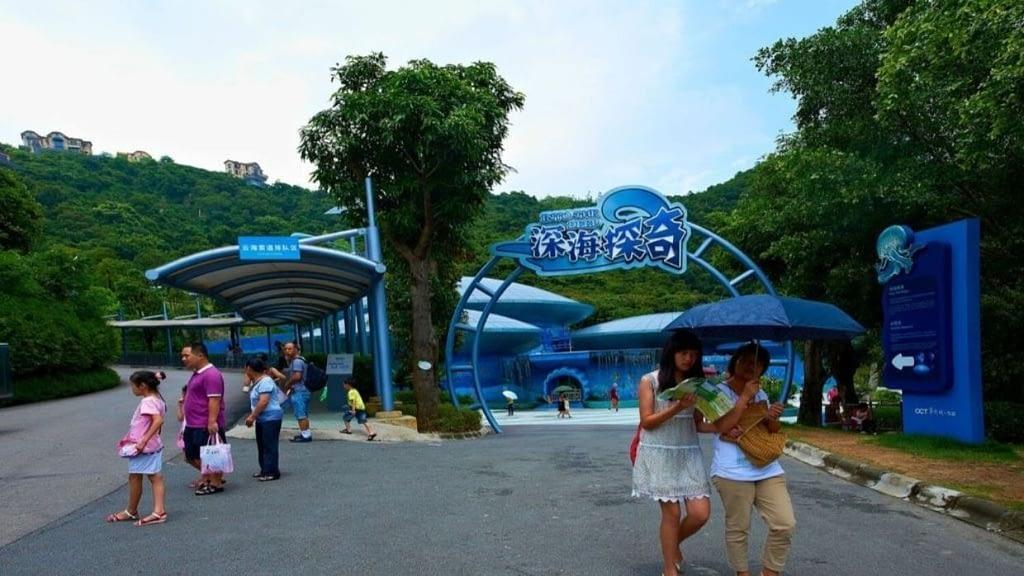 OCT Theme Park