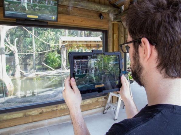 Pacu AR Exhibit at Brevard Zoo